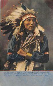 H96/ Native American Indian Postcard c1910 James Lone Elk Chief 193