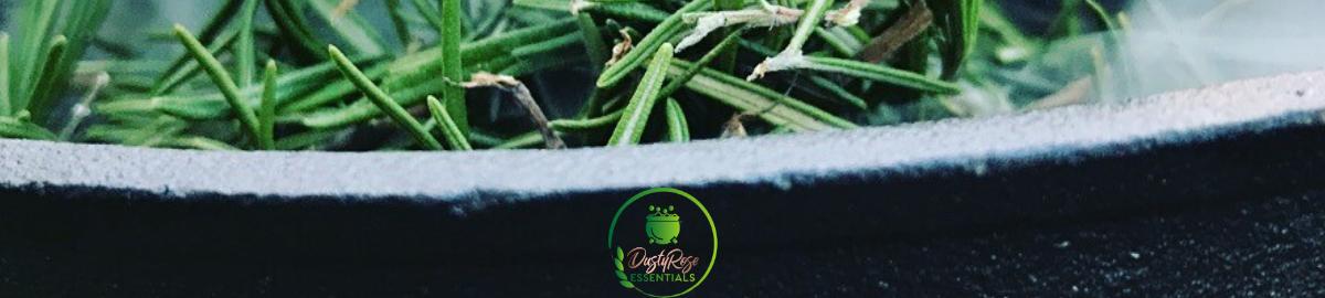 Dusty_Rose_Essentials