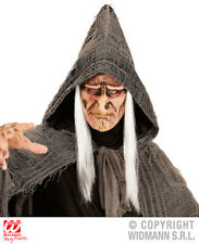 Evil Sorcerer Face Mask With Hair Witch Halloween Fancy Dress Accessory