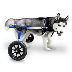 Dog Wheelchair - For Med/Lg Dogs 50-69lbs - By Walkin' Wheels