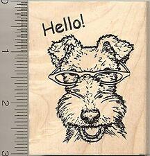 White Fox Terrier Dog Rubber Stamp, Wearing Glasses, Hello K50406 WM