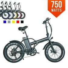 FAST 750watts 12AH Top Quality Fat Tire 48v Electric Bicycle Folding 20' E Bike
