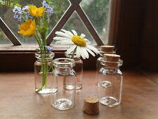 70x Glass Vial Bottles with cork crafts jewellery mini bottle small vase 22x40mm
