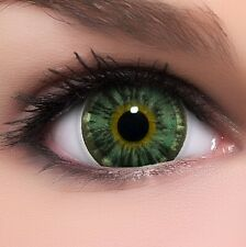 "BigEyes Circle Lenses Grün ""Nuddy Green"" Kontaktlinsen + GRATIS Behälter"