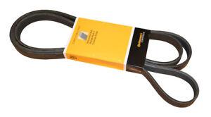 Serpentine Belt-DIESEL CRP PK060950
