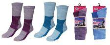 2 Pack RJM Ladies Trekking Sock Womens UK 4-7