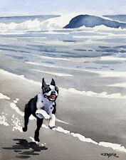 BOSTON TERRIER BEACH Dog Painting 8 x 10 ART Print by Artist DJ Rogers w/COA