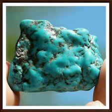 Polished Turquoise (TUR79)