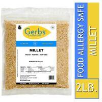 Millet Grain, 2 LBS Food Allergy Safe, Vegan & Non GMO by Gerbs
