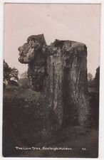 The Lion Tree Beeleigh, Maldon Essex RP Postcard, B701