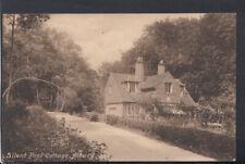 Surrey Postcard - Silent Pool Cottage, Albury   RS19514