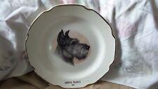 Vintage Porcelain Advertising Plate Sabina Geneva Mkt Mn 1969 Schnauzer Dog