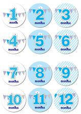 Baby Milestone Autocollants - 60 mm de diamètre, 12 in (environ 30.48 cm) Pack, 1-12 mois-Rose