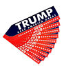 10Pcs Donald Trump Bumper Election Sticker Support Decal 2020 America Pretty Hot