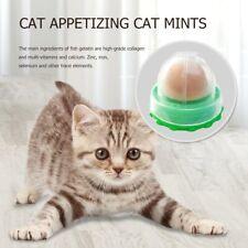 Cat Appetizer Catnip Candy