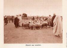 MARRAKECH MARCHE MOUTON MAROC IMAGE 1931 MOROCCO SHEEP MARKET OLD PRINT