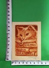"""EX LIBRIS 14 """" RARE CAT SERANDREI """" - * ENRICO VANNUCCINI * - C SIGNED!"""