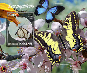 Togo Butterflies Stamps 2020 MNH Glasswing Swallowtail Butterfly Insects 1v S/S