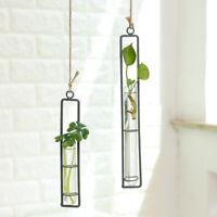 Crystal Glass Wall Hanging Flower Vase Planter Terrarium Container Pot Adorn