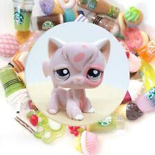 Authentic Littlest Pet Shop Pink Longhair Cat # 1726 + �*Suprise Food Items 0