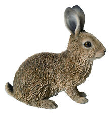 Real Life Young Sitting Hare Home or Garden Decoration (XRL-HARE-C)