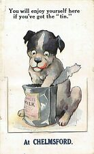 POSTCARD  COMIC CHELMSFORD  DOG  CONDENSED MILK   MAILING NOVELTY Circa 1923