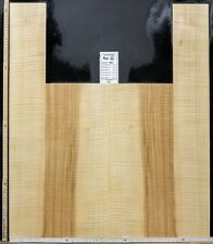 Tonewood Ash-Wood Ash Guitar Builder Luthier Acoustic Backs Side Curly 063