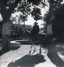 TERUEL c. 1950 - Homme sur son Âne  Espagne - DIV 6694