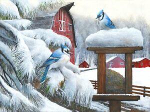 Blue Jays by Kevin Daniel Art Print Bird Wildlife Farm Barn Poster 20x26