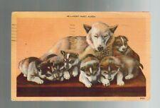 1956 Juneau Alaska to Anaheim California Dog Husky Family Real Photo RPPC Cover
