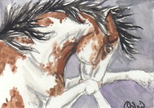 ACEO original Watercolor Art Card Horse Bay frame sabino Wild Mustang stallion