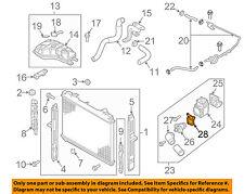 KIA OEM 03-06 Sorento 3.5L-V6 Radiator-Gasket 2562339800