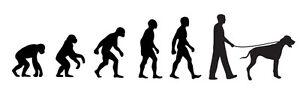 Great Dane Walker 'Evolution' car sticker, vinyl decal