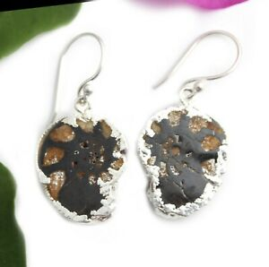 Natural Ammonite Fossil Silver Plated Earrings Gifts For Women Girls