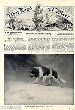 Il Salvatore nella not (San Bernardo) A. weczerzick Antique print 1903