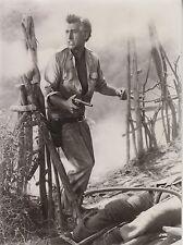 """Stewart Granger (Pressefoto '54) - """"Grünes Feuer"""""""