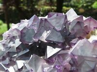Minerali *** FLUORITE OTTAEDRICA VIOLA Cina