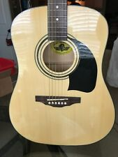 Washburn Lyon Acoustic Guitar