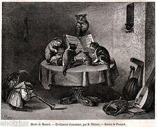 Concerto d'amatori, con Gatti, Gufi e Scimmie. Stampa Antica + Passepartout.1863