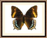Butterfly 8532, Cross Stitch Kit