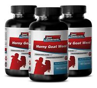 testosterone booster evltest - HORNY GOAT WEED 1560MG - horny goat weed caps 3B