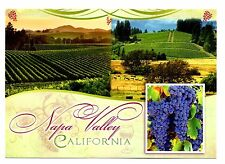 Napa Valley California Postcard Grapes Wineries Leading Wine Region New