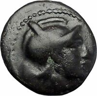 SKOTUSSA in THESSALY 300BC Ares Horse Authentic Ancient Greek Coin i49475