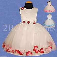 Unbranded Formal Floral Dresses (0-24 Months) for Girls