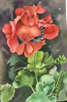 "Original watercolor painting by artist Zina Andresini Poliszuk ""Geranium"""