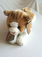 IBTT Anna Club Plush Lying Brown Cat Soft Toy 30 cm