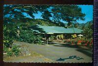 WAIOLI TEA ROOM Manoa Valley Honolulu Hawaii Vintage 1976 Postcard