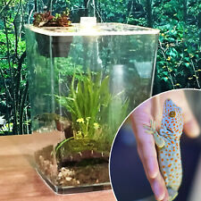 Clear Breeding Box Case Feeding Reptile Gecko Lizard Spider Insect Cage Acrylic