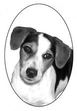 """4""""X6 Jack Russell static cling etched glass decal"""