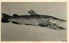 1920s Fishing Trout Andrews Nebraska Tom Hilton Rppc Real photo 2607